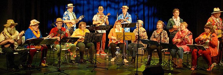 Warkauden ukuleleorkesteri WAU, kuva: Jyrki Loukola